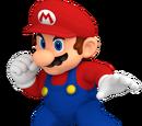 BatMario753/The Mario Combat Project