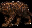 Сумрачный леопард