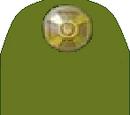 Рангові військові відзнаки УСД