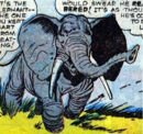 Rajah (Elephant) (Earth-616) from Tales to Astonish Vol 1 21 001.jpg
