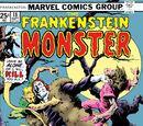 Frankenstein Vol 1 18