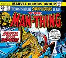 Man-Thing Vol 1 13