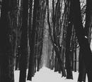 NotEsfir/Tundraclan