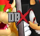 Bowser vs Shadow