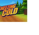 Sneezing Cold