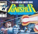 Punisher Vol 1 1