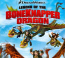 Dragons: La leggenda del drago Rubaossa