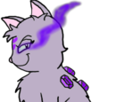 Starfury the Amethyst Cat