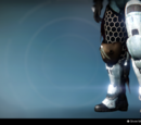 Challenge of the Elders Titan Armor