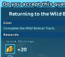 Wild Bobcat Track