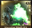 Haustier Medi-Kit