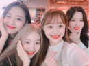 Yyxy Twitter Update 1.5.18.png