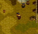 Wild Arms 2 towns