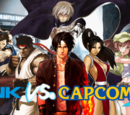 SNK vs Capcom 3: Unlimited Combats