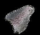 Fischschuppen