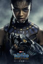 Black Panther Character Posters 02.jpg