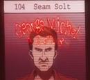 Seam Solt