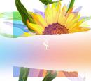 Re:flower Project 3