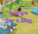 A Cure for a King