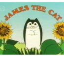 James the Cat
