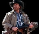 Chuck Norris (Fact Book)