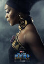 Black Panther Character Posters 01.jpg