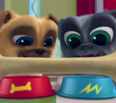 Puppy Dog Pals theme