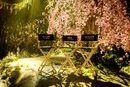 Maleficent 2 Cast Set Chairs.jpg
