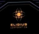 Eligius Corporation