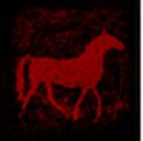 Cavallo selvaggio portami via.png