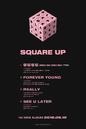 BLACKPINK Square Up Full Tracklist teaser.png