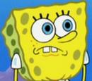 SpongeBob Krągłoporty