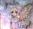 Gevallen Engel: Overzicht