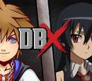 Sora vs Akame