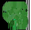 Animal Summoning I SPPR402C Spell icon IWDEE.png