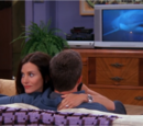 The One With The Sharks