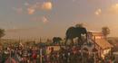 Dumbo 2019 1.png