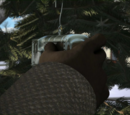 The Missing Christmas Decorations/Gallery