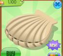 Giant Sea Shell