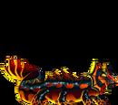 Plethodon