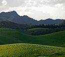 Fazbear Hills (OhioWarrior2003)