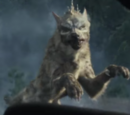 Dark Wolf (LOTM)