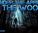INTO THE WOODS!