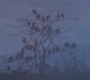 Swamp of the Ravens