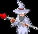 The Wizard (Amero Kingdom)
