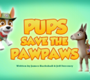 Pups Save the PawPaws