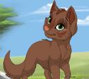 Luipaardklauw: Ivy
