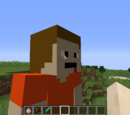 The SBFW Minecraft Mod