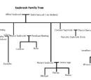 Saybrook Family