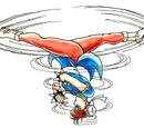 Spinning Bird Kick